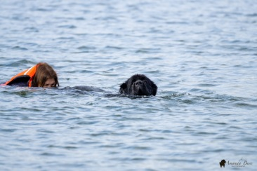 Amy & Kennedy (Swim with handler)