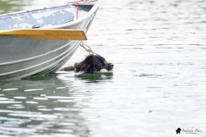 Pi retrieving abandoned boat